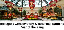 Bellagio Conservatory and Botanical Gardens - Year of the Yang