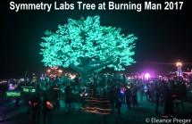 Symmetry Labs tree at Burning Man 2017